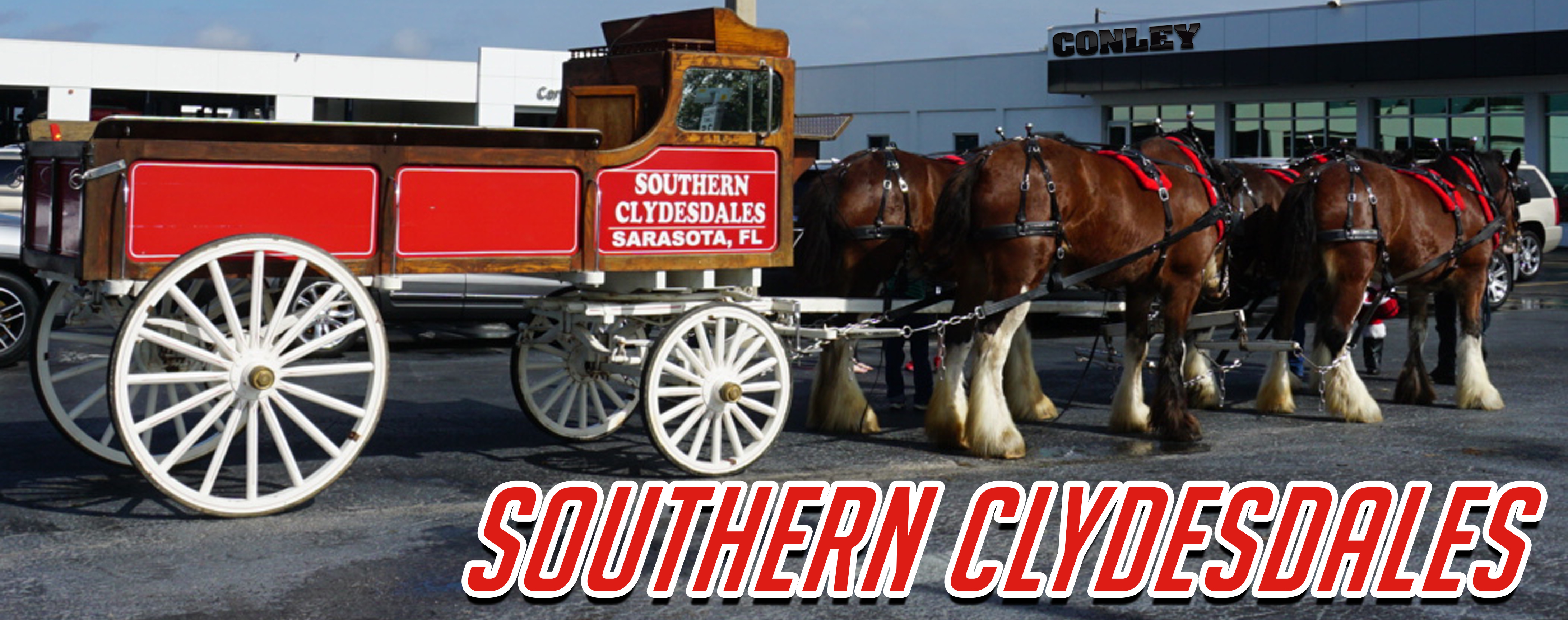 Southern Clydesdales Logo